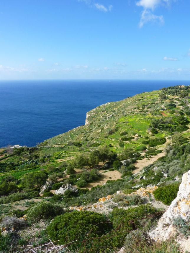 zelené útesy na Maltě Dingli Cliffs